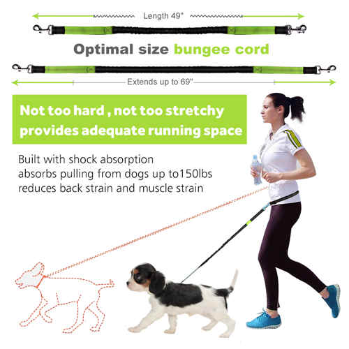 Hands Free Dog Leash for Running Walking Training Hiking, Dual-Handle Shock Absorbing Reflective Bungee, Adjustable Waist Belt and Pouch, Ideal for Medium to Large Dogs (Black / Green)